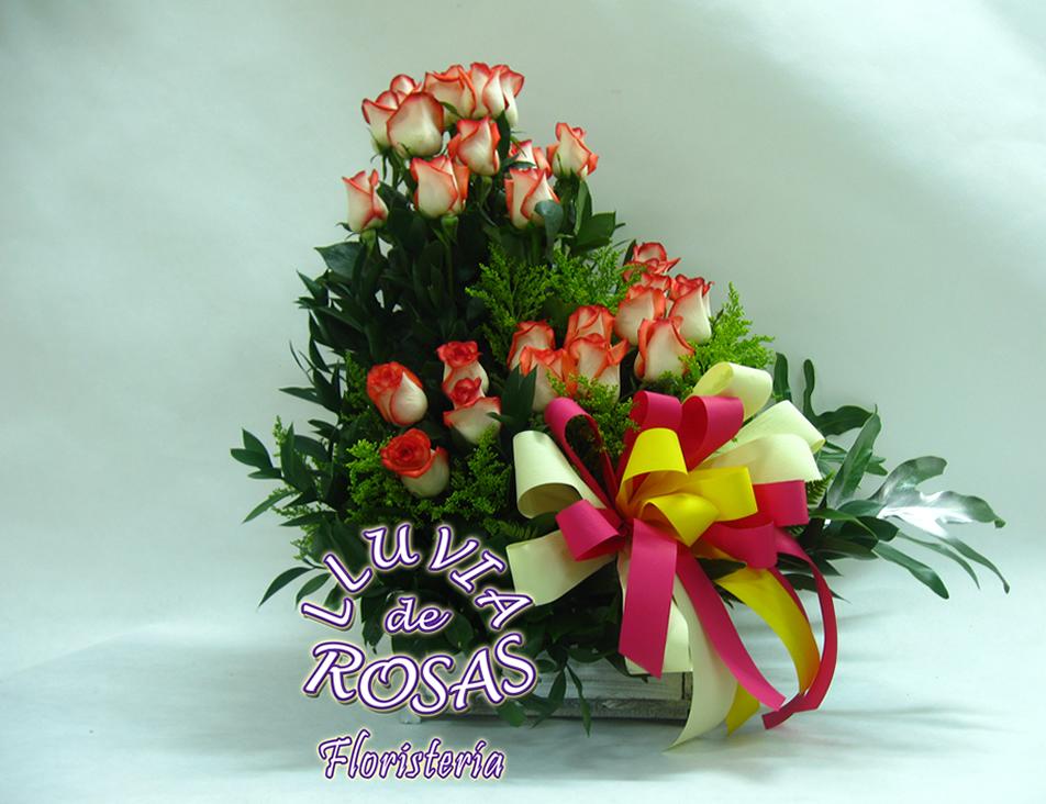 Rosas en Caracol