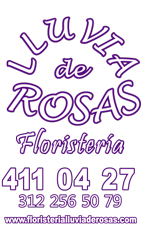 Floristería en Medellín Lluvia de Rosas