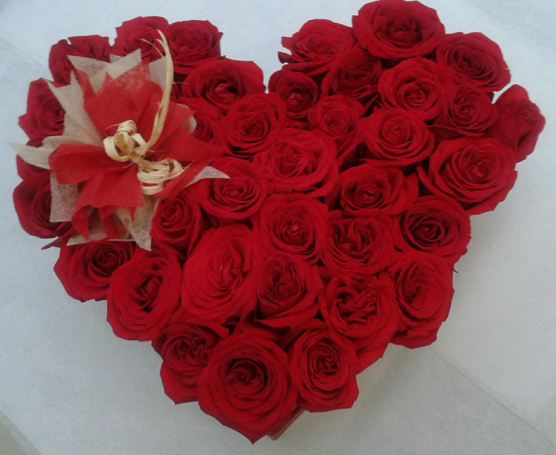 Corazón en Rosas